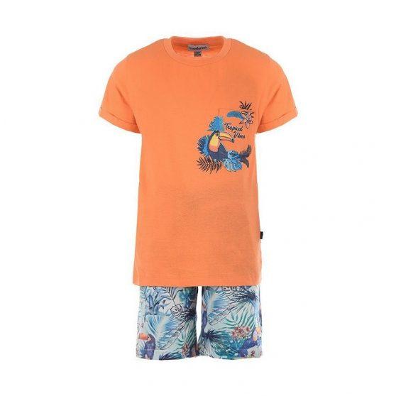 21906008-mandarino-set-portokali-tropical-vibes